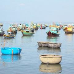 Cấm lặn hải đặc sản trên vùng biển Bình Thuận đến hết tháng 7/2018