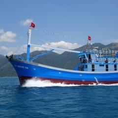 Chứng nhận thủy sản khai thác vì sự phát triển bền vững