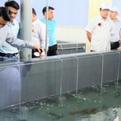 Nuôi trồng thủy sản Ninh Thuận tiếp tục khởi sắc