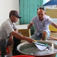 Nông dân làm giàu nhờ sản xuất giống thủy sản