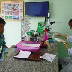 Trung tâm xét nghiệm bệnh tôm miễn phí tại Quảng Bình