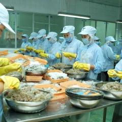 Hàn Quốc sẽ kiểm tra cơ sở chế biến tôm của Việt Nam