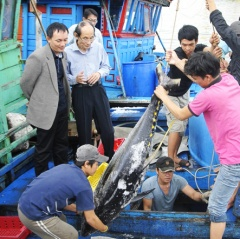 Tiến bộ kỹ thuật bảo quản cá ngừ
