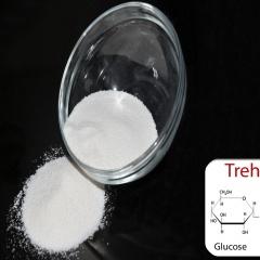 Tăng trưởng cho tôm thẻ nhờ bổ sung đường Trehalose