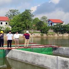 Bắc Giang: Ứng dụng công nghệ cao trong nuôi cá thâm canh