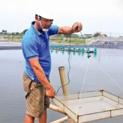Đông Hoàng: Nuôi trồng thủy sản theo hướng bền vững