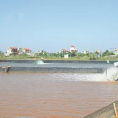 Tiền Hải: Phòng chống bệnh đốm trắng trên tôm
