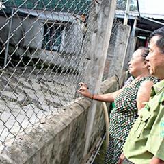 Bà Rịa - Vũng Tàu: Giá cá sấu tăng mạnh, người nuôi phấn khởi