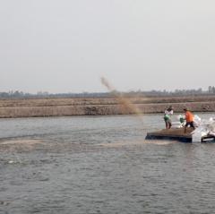 Đồng Tháp: Rà soát tình hình thực hiện quy hoạch nuôi cá tra