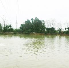 Hậu Giang: Khuyến cáo biện pháp quản lý thủy sản nuôi trong mùa mưa bão