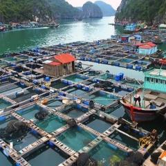 Điều kiện cơ sở nuôi và sản xuất giống thủy sản