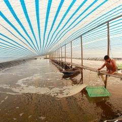 Kinh nghiệm phòng chống nắng nóng cho thủy sản ở Hà Tĩnh