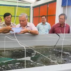 Những quy định xử phạt vi phạm hành chính trong lĩnh vực thủy sản