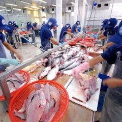 Hai nhóm vấn đề ngành thủy sản cần tập trung giải quyết