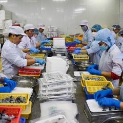Xuất khẩu thuỷ sản đạt gần 4 tỷ USD nửa đầu năm