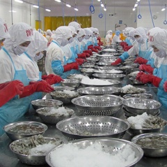 Gỡ nút thắt áp thuế phá giá, cảnh báo thẻ vàng cho thuỷ sản Việt Nam