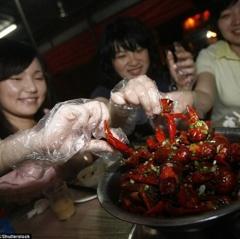 Ăn 2,5 kg tôm mỗi ngày để kiếm việc lương 5.000 USD mỗi tháng