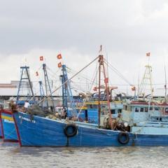 Phan Rí Cửa: Cấm đánh bắt cá mùa sinh sản