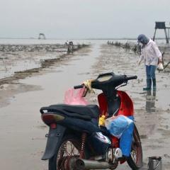 """Quảng Ninh: Dân muốn bắt sá sùng phải """"nộp tô"""""""