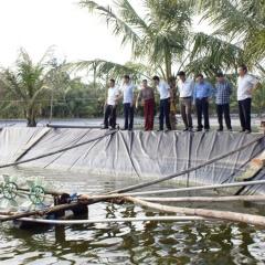 Biện pháp nuôi thủy sản khi nắng nóng kéo dài, mưa dông bất thường