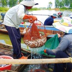 Tập trung bảo vệ nguồn lợi thủy sản
