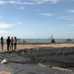 Khánh Hòa dần hoàn thành dự án sản xuất tôm giống tập trung