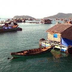 Kiên Giang: Chú trọng nuôi thủy sản cả mặn - lợ - ngọt