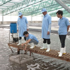 Bình Định: Kêu gọi doanh nghiệp đầu tư vào ngành thủy sản
