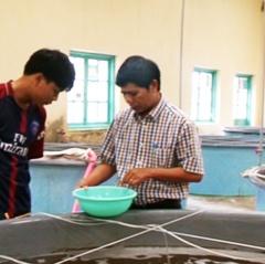 Bình Thuận: Nâng cao chất lượng tôm giống