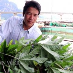 Lạ mà hay: Làm giàu nhờ biết cách nuôi cá bằng thảo dược