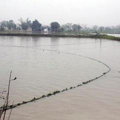 Trong 7 tháng, thiên tai gây thiệt hại cho 8.321 ha thủy sản