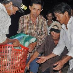 Thừa Thiên Huế: Thu hoạch thủy sản tránh lũ