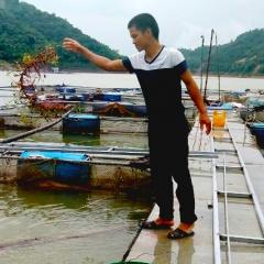 """Gặp """"kình ngư"""" trên lòng hồ sông Đà"""