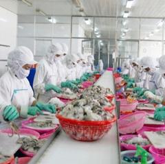 Vướng mắc thủ tục: thuỷ sản Việt khó vào siêu thị dịp Tết 2019