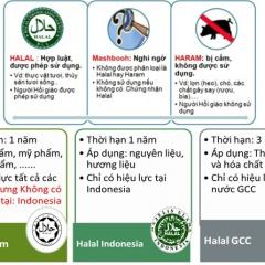 Chứng chỉ HALAL chìa khóa tiếp cận thị trường tiêu dùng hồi giáo