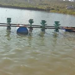 Nông dân sáng tạo nuôi cá thu tiền tỷ