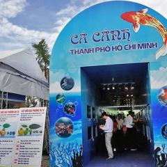 20-9 diễn ra ngày hội cá cảnh TP.HCM năm 2018