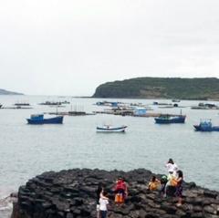 Phú Yên: xử lý dứt điểm nuôi tôm hùm trái phép ở gành Đá Đĩa