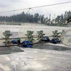 Thừa Thiên Huế tăng cường bảo vệ tôm nuôi trong mùa mưa lũ