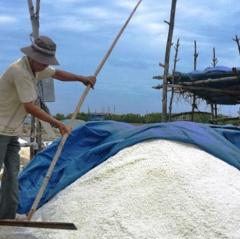 Vụ muối Bình Định 2018: Sản lượng tăng, giá ổn định
