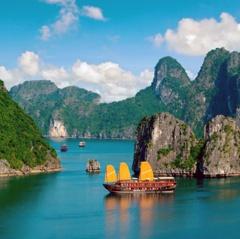 Cấm đánh bắt cá trong vịnh Hạ Long