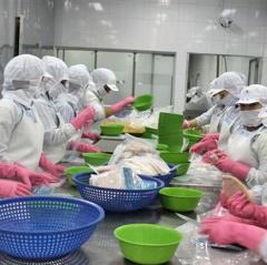 Lưu ý khi xuất khẩu thủy sản lần đầu vào Trung Quốc