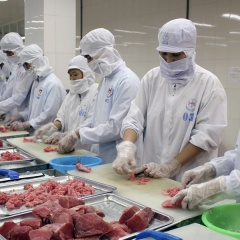 Trung Đông tăng nhập khẩu cá ngừ từ Việt Nam