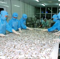 Doanh nghiệp đẩy mạnh chế biến tôm xuất khẩu