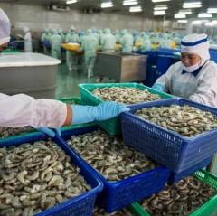 Vượt áp lực thẻ vàng IUU, xuất khẩu thủy sản dự kiến đạt 9 tỷ USD