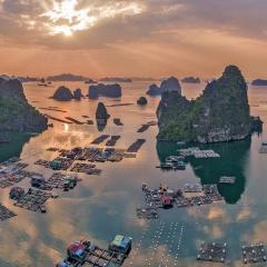 Từ 01-10-2018 Quảng Ninh cấm đánh bắt thủy sản ở Vịnh Hạ Long