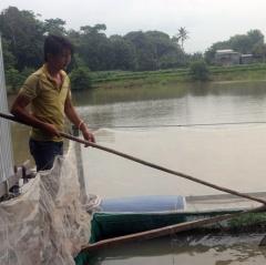 Lãi trăm triệu nhờ nuôi cá đặc sản mùa nước lũ