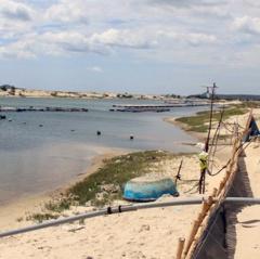 Phú Yên: Sang nhượng đất bãi bồi trái phép để nuôi tôm cao triều