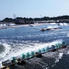 Hướng đi đúng trong phát triển kinh tế thủy sản Đầm Hà