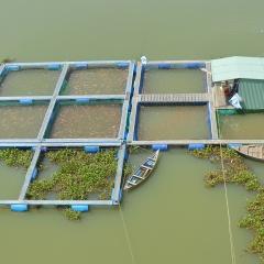 """Công nghệ """"nâng bước"""" ngành thủy sản"""